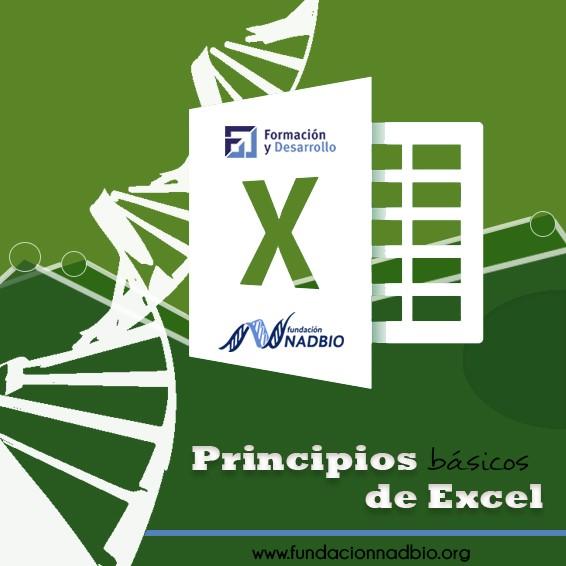 Principios de MS Excel