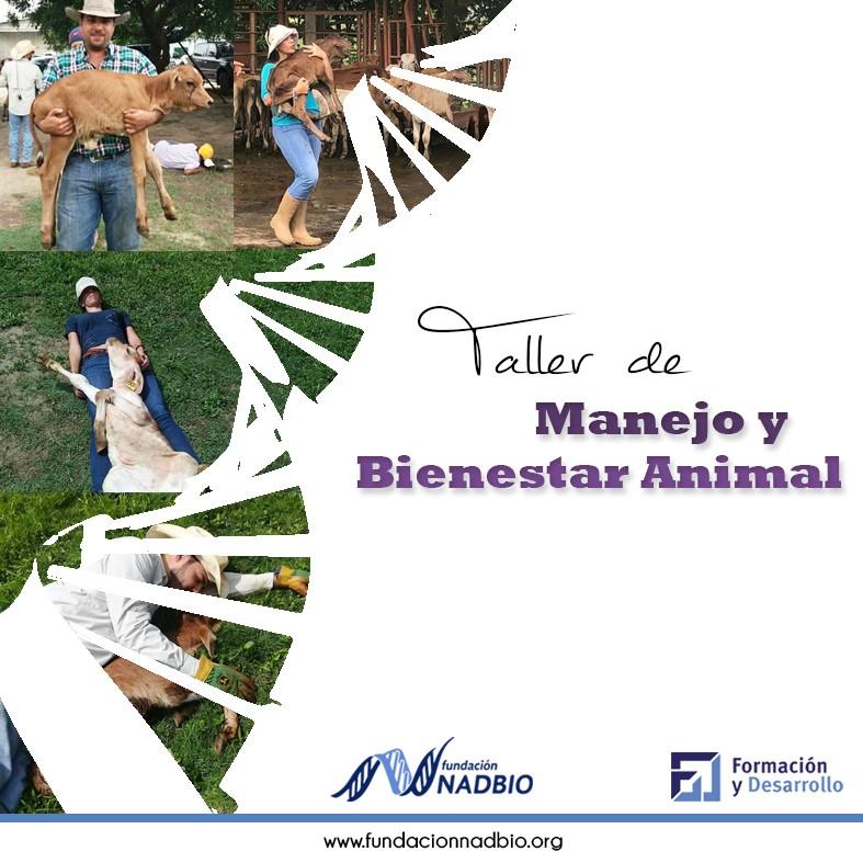 MANEJO Y BIENESTAR ANIMAL